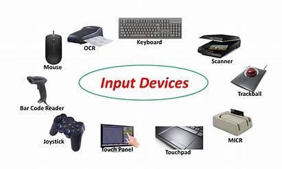 Input Device Computer Hardware Notes