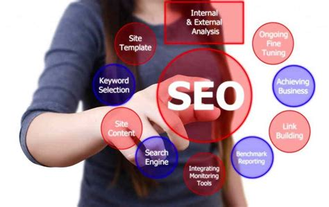 seo website web promotion seo shreya software technology pvt ltd
