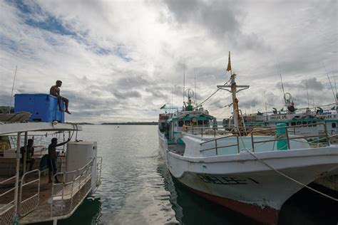 Tuna Boat Cost by Caught In A Net Of Denial The Cost Of Record Tuna Catches