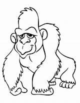 Gorilla Coloring Orangutan Clipart Printable Animals Gorila Clipartion Para Boys Draw Drawings Coloringbay Library Clipartmag Cliparts Sitting sketch template