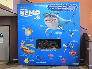 "SPECIAL ""FINDING NEMO 3D"" DISPLAY – THE REEL & THE REAL ..."