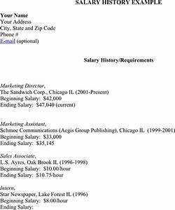 salary history example download free premium templates With salary history template hourly