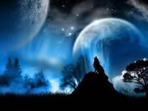 Blue Moon Wolf Photo by mchopt   Photobucket