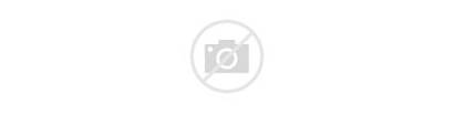 Picnic International June 18th Greetings Wishes