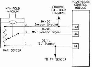 1993 Honda Prelude Vacuum Diagram : 1995 chrysler new yorker vacuum hose schematic questions ~ A.2002-acura-tl-radio.info Haus und Dekorationen