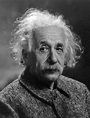Albert Einstein Facts   Cool Kid Facts