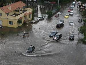 Miami beach flash flood and fancy cars picture