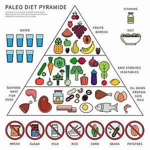 Dieta Paleo  Come Funziona  Schema Menu Settimanale  Cosa