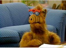 Alf vom Melmac Der Fernsehheld unserer Jugend