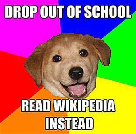 Animal Advice Meme - 10 popular advice animals internet memes