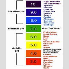 Acidbase Balance & Buffers  By Harsaan Nithiananthan  Grade 12u Chemistrysystems And Equilibrium