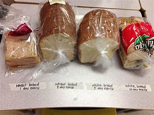 Decomposing foods | ingridscience.ca