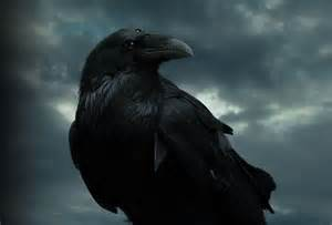Game of Thrones Three Eyed Raven