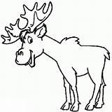 Elk Coloring Pages Azcoloring Via sketch template
