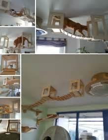DIY Indoor Cat Playground
