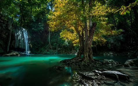 Thailand Waterfall Trees Creek Wallpaper 1680x1050