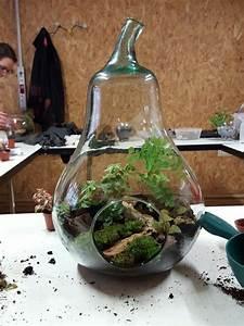 Bonsai Im Glas : pingl par le coin jardin sur 300 terrariums pinterest jardins miniatures jardins et terrarium ~ Eleganceandgraceweddings.com Haus und Dekorationen