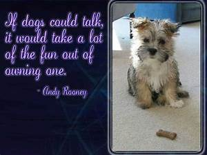 Best Dog Image Quotes And Sayings - Page 3