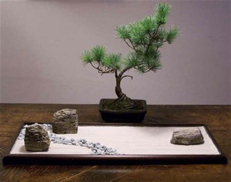 Lade Da Tavolo Vendita On Line bonseki il giardino zen da tavolo