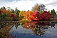 Botanical Gardens Victoria BC