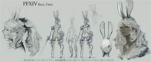Viera The Final Fantasy Wiki 10 Years Of Having More