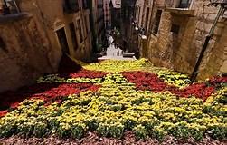 Résultat d'image pour Temps de Flors