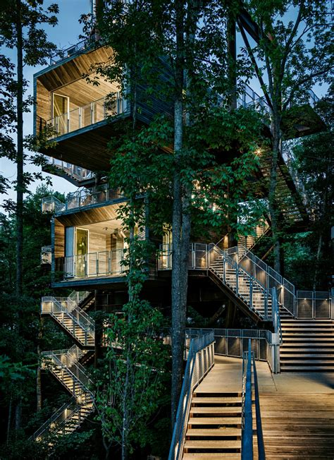 House In Tree by The Sustainability Treehouse Mithun Arch2o