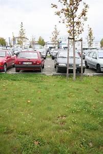 In Welchem Bundesland Liegt Freiburg : darf regenwasser vor ort versickern ein ziel viele m glichkeiten regenabfluss von ~ Frokenaadalensverden.com Haus und Dekorationen