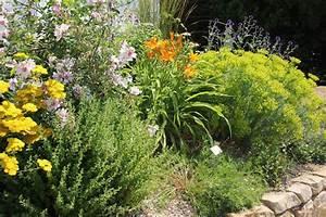 Pflanzen Bestimmen Nach Bildern : staudenbeete richtig pflegen staudeng rtnerei gr fin von zeppelin ~ Eleganceandgraceweddings.com Haus und Dekorationen