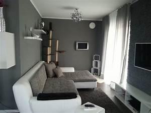 Graue Wand Wohnzimmer : 99 wohnzimmer graue wand wohnzimmer silber streichen foyer on schlafzimmer wand bemalen ~ Indierocktalk.com Haus und Dekorationen