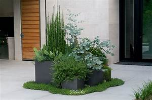 Contemporary, Lead, Pots, Using, Textural, Plants, Including, Equisetum, Horsetail, Grass, Rosmarinus