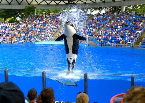 San antonio rv parks & campgrounds. SeaWorld San Antonio in San Antonio Texas » HereForTheBeer.com