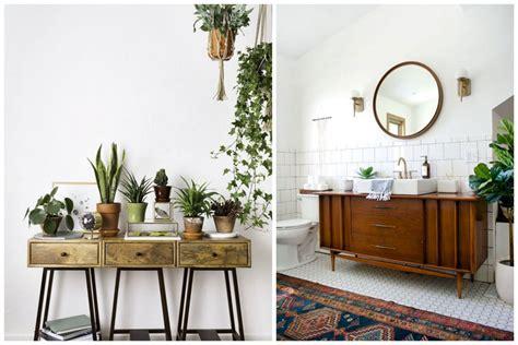 poser sa cuisine 14 idées pour décorer sa maison avec des plantes vertes