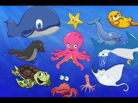 the sea animal words for toddlers show 327   hqdefault