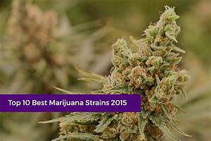 Bester Cannabis Dünger : soma colorado top 10 best marijuana strains 2015 ~ Michelbontemps.com Haus und Dekorationen