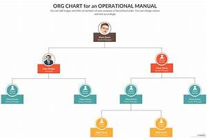 Organizational Chart For An Operations Manual
