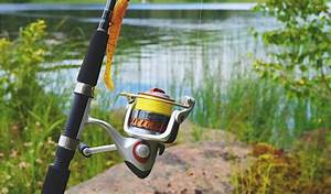 The Ultimate Guide To Fishing  How To Get Started
