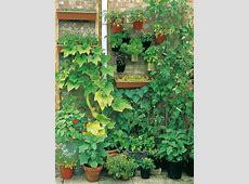 How to Grow a Vertical Vegetable Garden howtos DIY