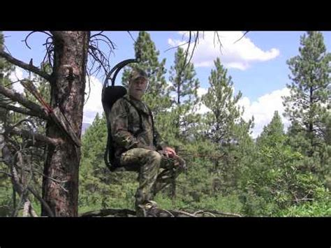 Bow Hunting Tree Stands by Hung Right Hunter Chair Vs Average Tree Stand Rethink