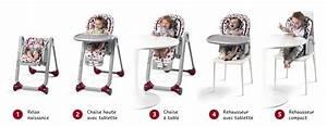 Chaise Haute Des La Naissance : chaise haute chicco polly progres5 grey chaise haute chaise haute convertible tendresse de ~ Teatrodelosmanantiales.com Idées de Décoration