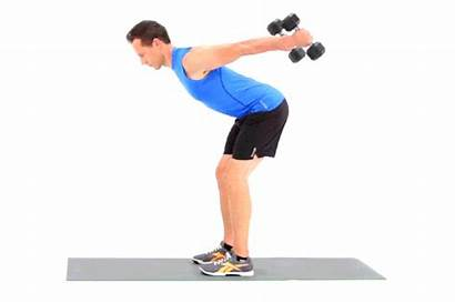 Dumbbell Workout Strength Beginners Livestrong Lead Perfect