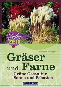Gräser Für Schatten : gr ser und farne gr ne oasen f r sonne und schatten ~ Michelbontemps.com Haus und Dekorationen