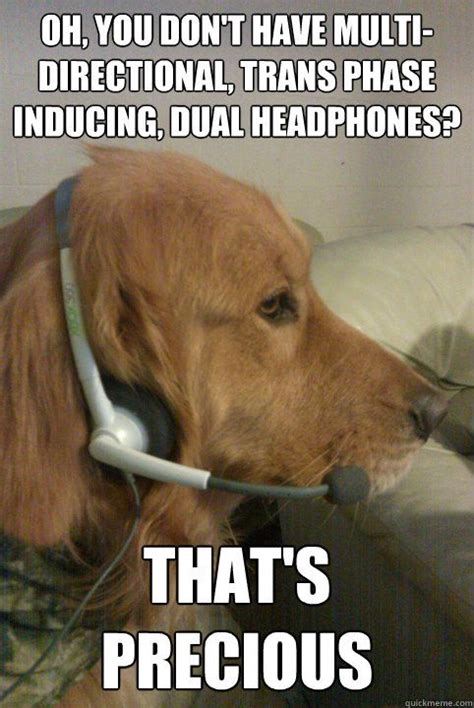 dogs on headset meme inducing dual headphones that s precious xbox live dog