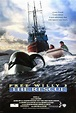 Free Willy 3: The Rescue Movie Posters From Movie Poster Shop