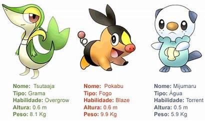 Pokemon Os Fogo Starters Esses Franquia Outros