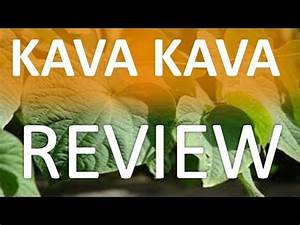 Kava Kava Root Review - Uses  Side Effects  U0026 Health Benefits