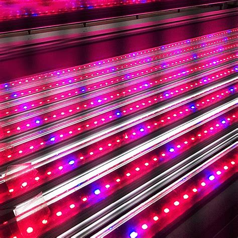 aliexpress buy spectrum led grow light led bar