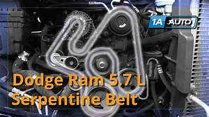 6 7 Cummins Serpentine Belt Diagram  U2014 Untpikapps
