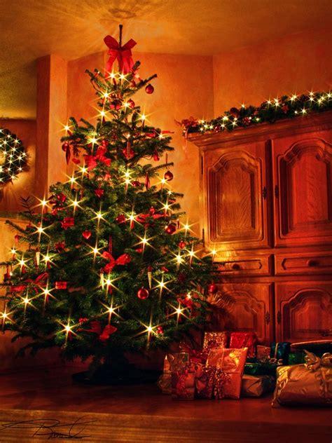 weihnachtsbaum 2009 foto bild gratulation und