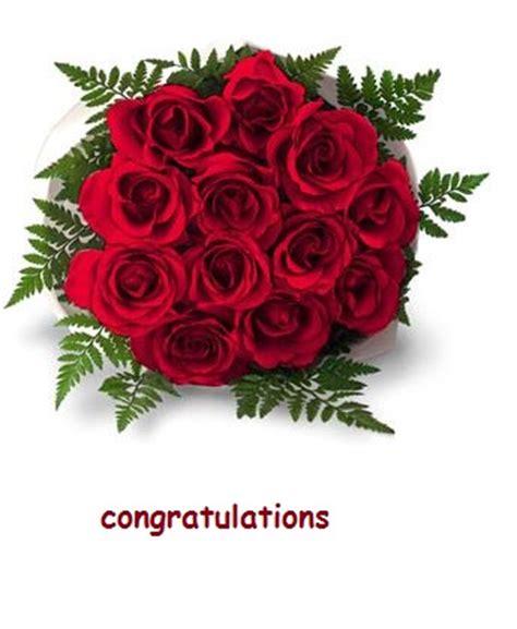 congratulations   bunch  roses  congratulations ecards